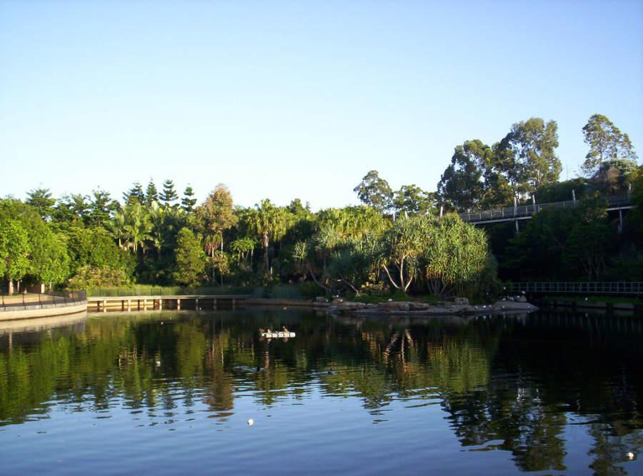 Lago en el parque Roma Street Parkland