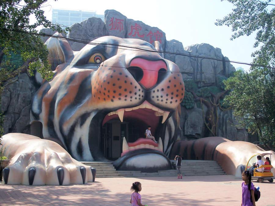 Zoológico en Tianjín