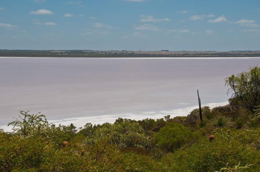 Pink Lake en Esperance