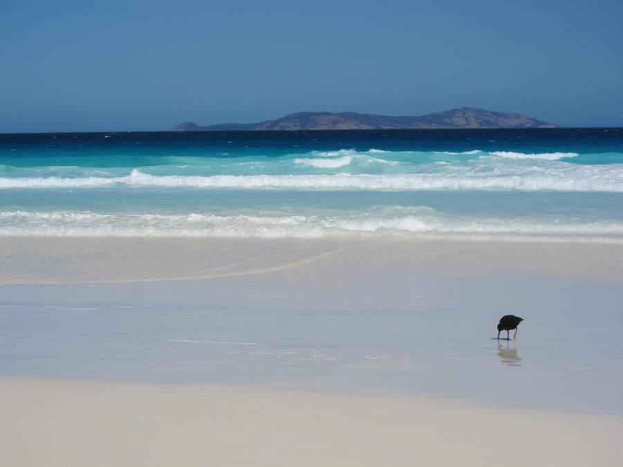 Playa de arena blanca en Esperance