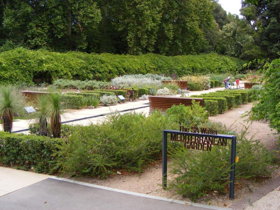 The SA Water Mediterranean Garden