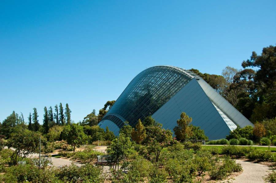 Adelaide Botanic Garden, jardín botánico y parque de 51 hectáreas
