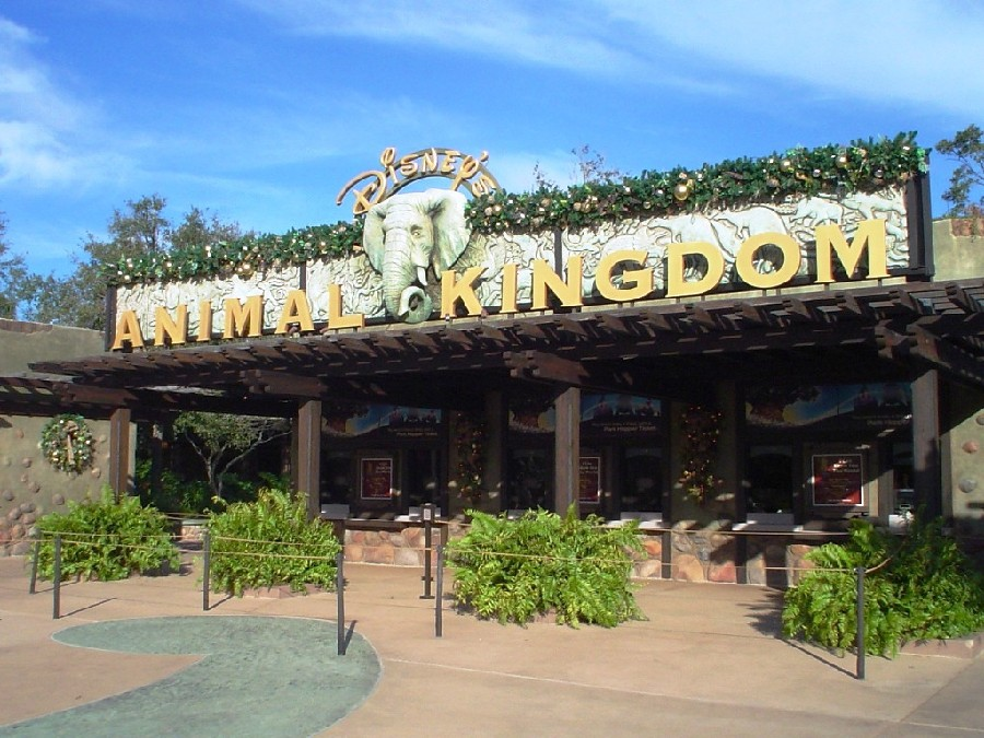Parque Animal Kingdom® en Walt Disney World Orlando