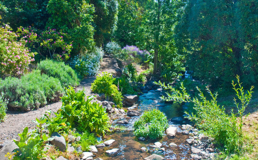Akaroa es famoso por sus jardines