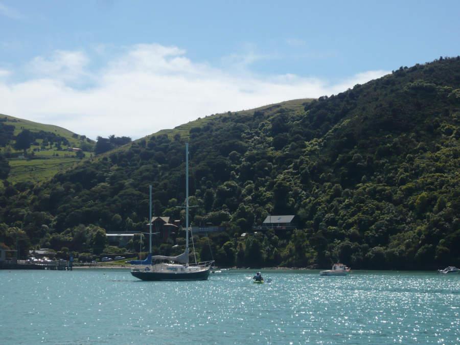 Akaroa es ideal para pasear en barco
