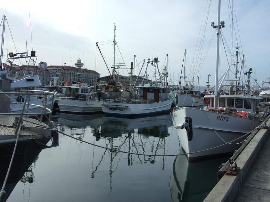 Embarcaciones de pesca en Hobart