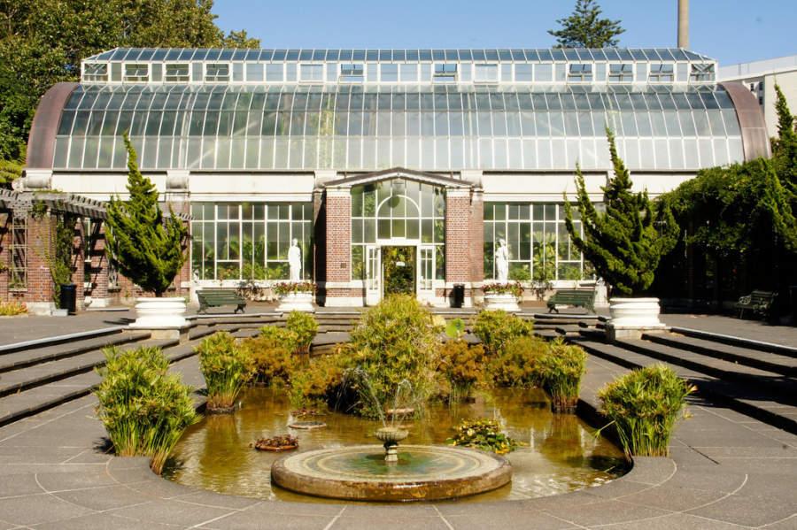 Auckland Domain es uno de los parques más grandes de la ciudad