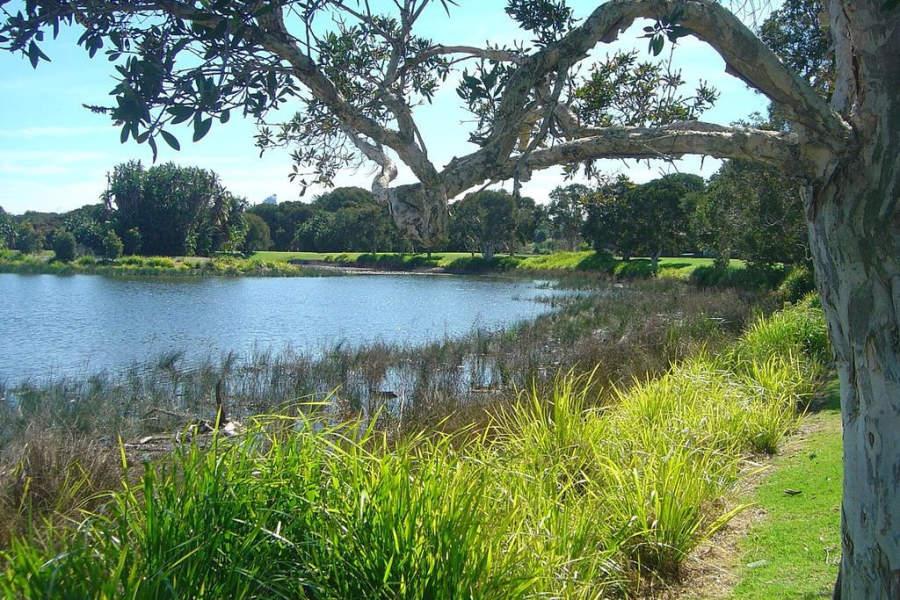 Centennial Park, parque de 220 hectáreas en el área metropolitana de Sídney