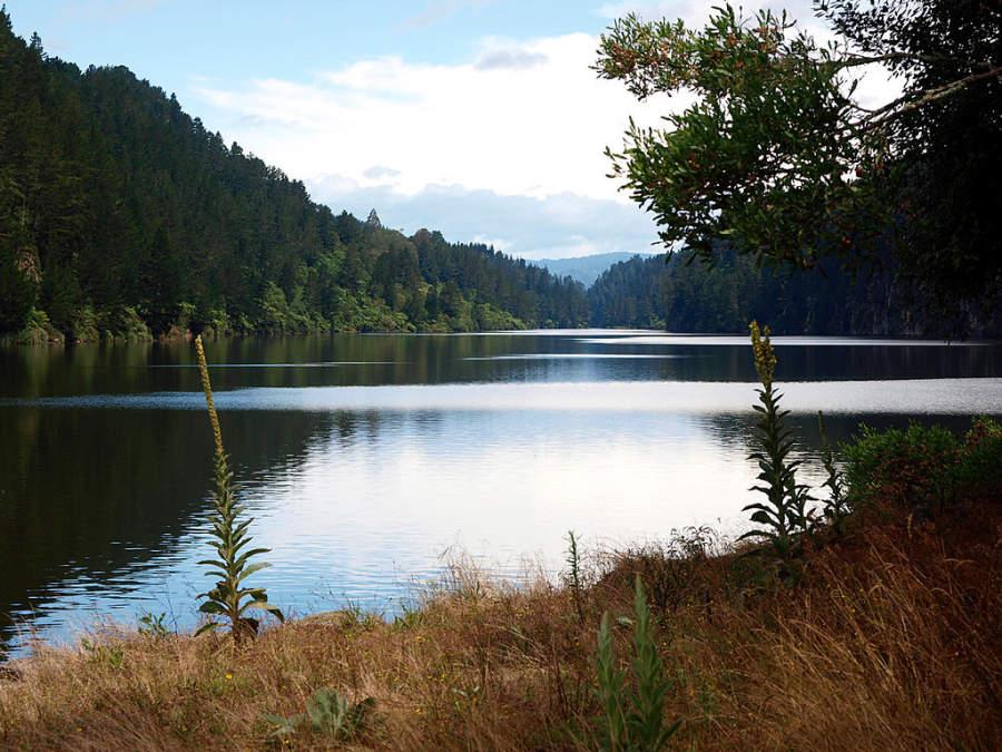 Lago Matahina