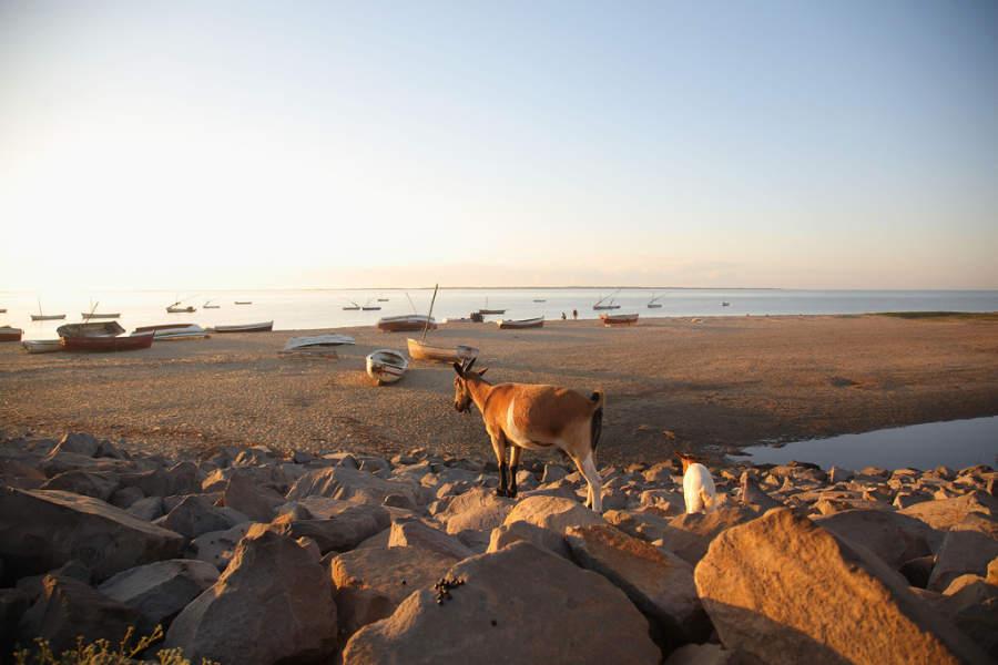 Barcos de pesca en una playa de Maputo