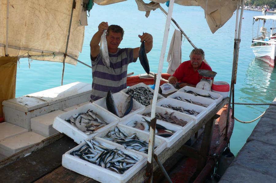 Vendedores de pescados en Zante