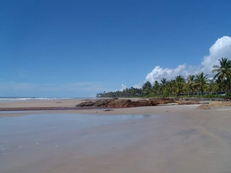 Amplia playa con palmas de coco en Ilhéus