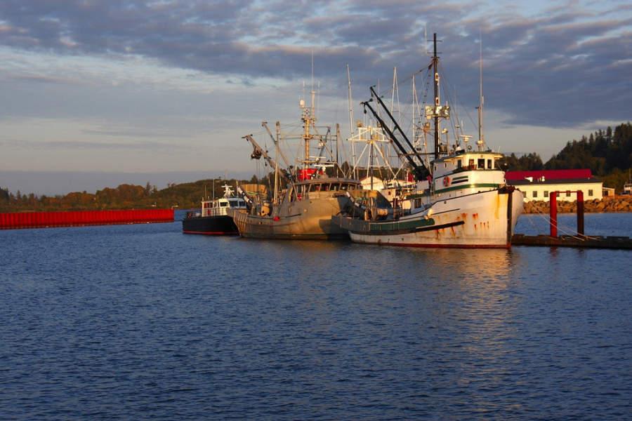 Embarcaciones de pesca en Astoria