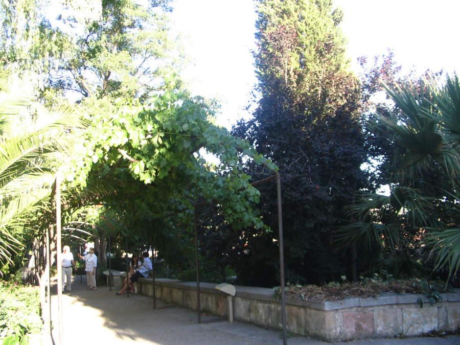 Huerto de Calixto y Melibea, parque en el casco antiguo