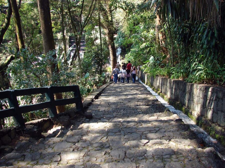 Senderos del Parque Nacional de Uruapan