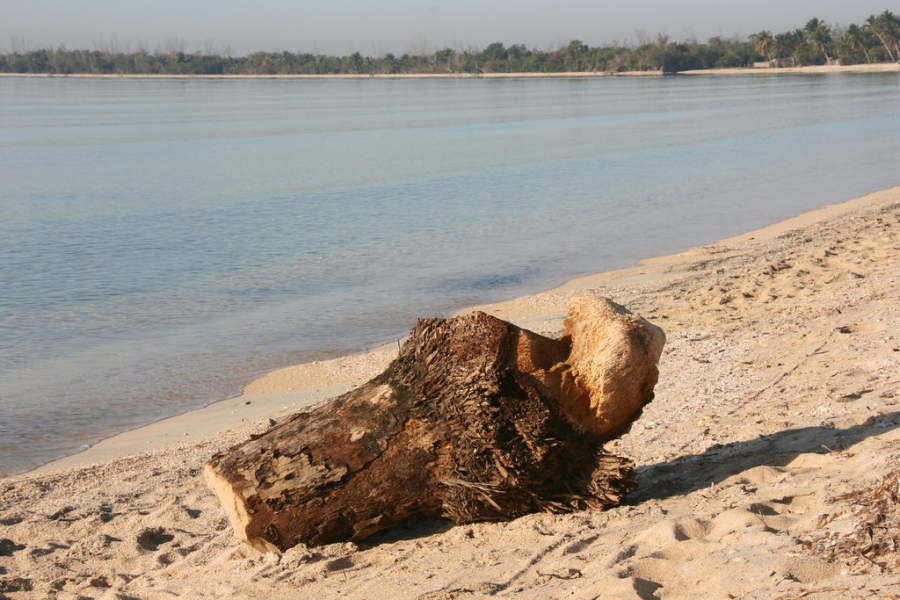 Playa tranquila en Playa Larga
