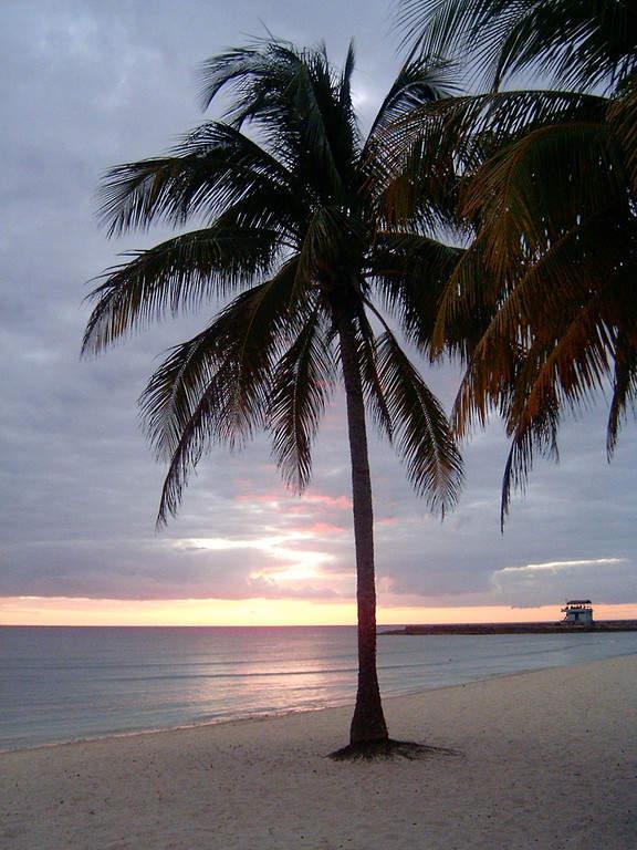 Playa Girón se localiza a 35 kilómetros de Playa Larga
