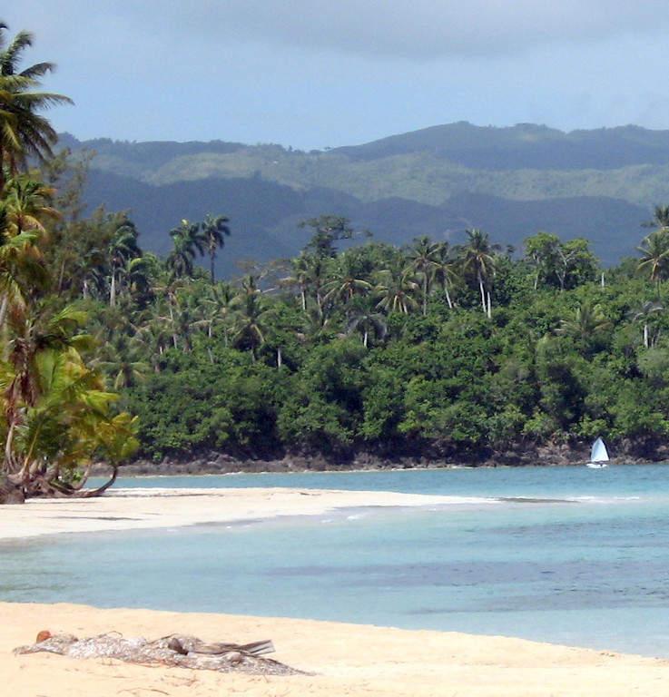 Vegetación costera de Las Terrenas