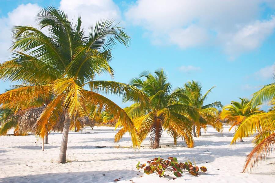 Playa Sirena en Cayo Largo del Sur