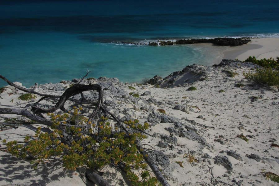 Playa Perla Blanca en Cayo Santa María