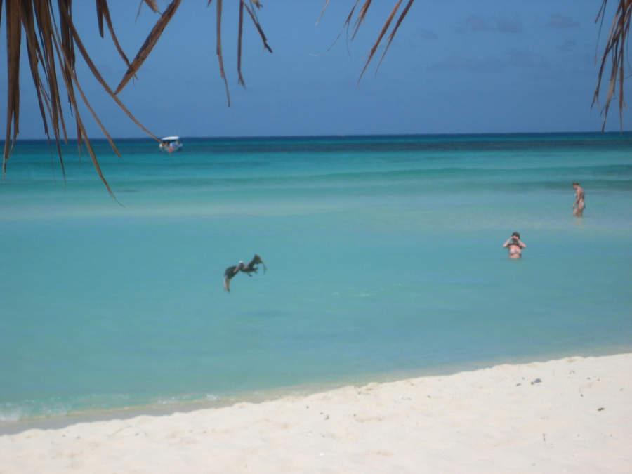 Eagle Beach tiene un área nudista