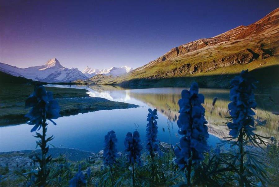 El lago Bachalpsee es uno de los más bonitos de toda Suiza
