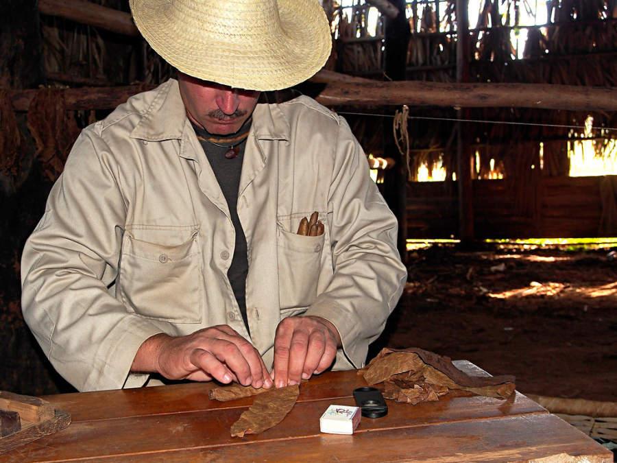 El tabaco de Pinar del  Río se considera de los mejores del mundo