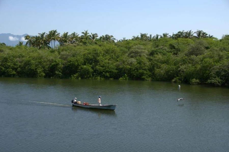 Los Canales de Nuevo Vallarta son famosos por sus recorridos en lancha