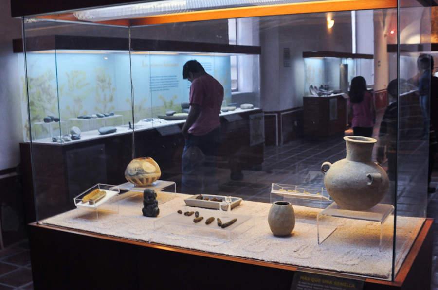 El Museo del Valle de Tehuacán en Puebla fue inaugurado en el año 1967