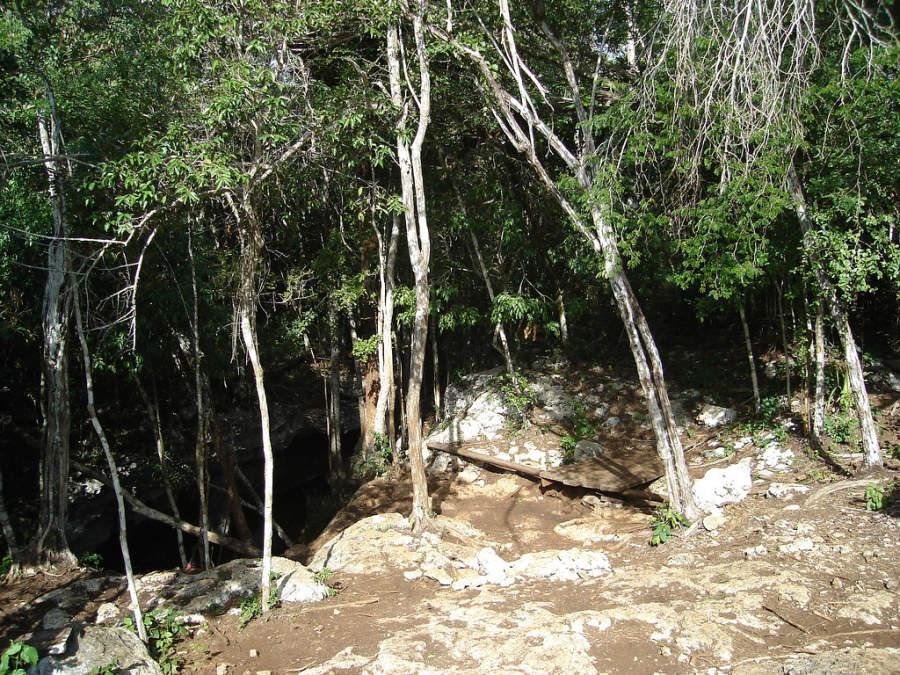Vista del cenote Santa Cruz, uno de los mas visitados en Akumal