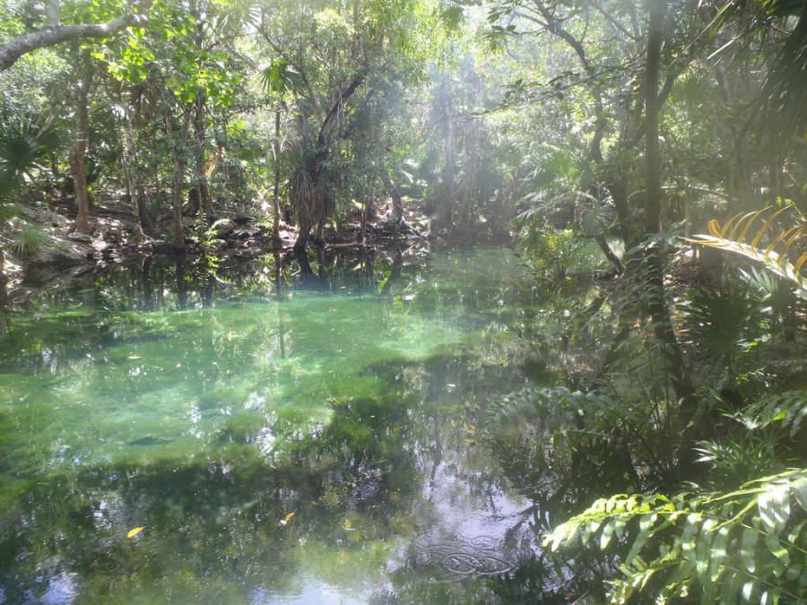 Los cenotes de Akumal son solo uno de sus atractivos