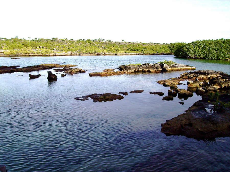 En la laguna Yal-Kul puedes nadar o hacer snorkel