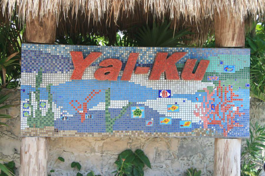 Visita la laguna Yal-Ku en Akumal