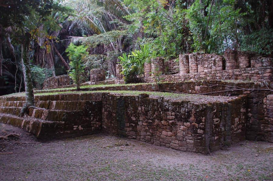 Algunas de las edificaciones dentro de Kohulich están cubiertas por un manto de vegetación