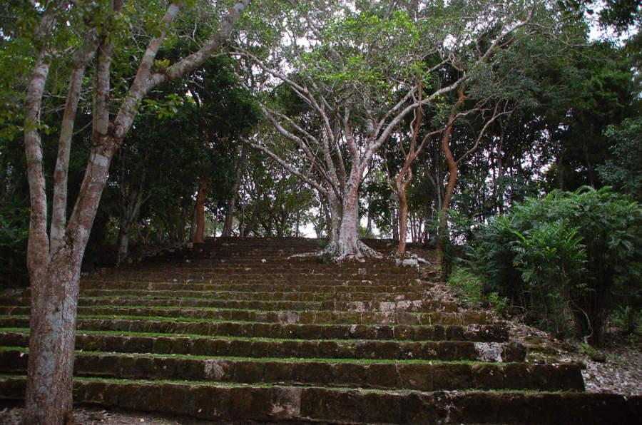 Conoce la estructura de los 27 escalones, un antiguo complejo residencial de la élite maya